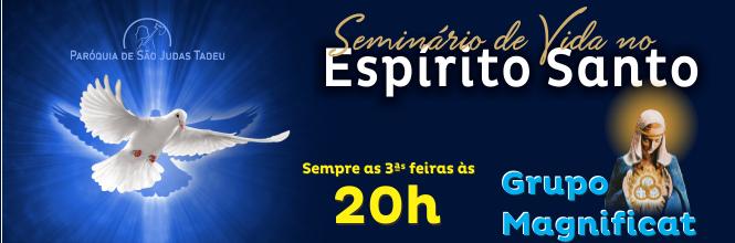 Banner665-Sem_Vida_ES_Magnificat2017