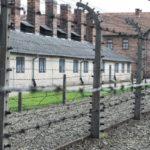 """Auschwitz. Dom Schick: """"Europa precisa de espaços experienciais"""""""